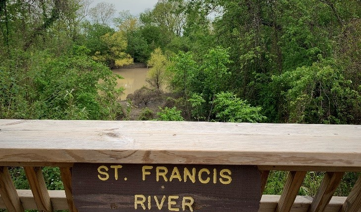 The St. Francis River surrounded by green trees as seen from the overlook along the trail at Parkin Archeological State Park.