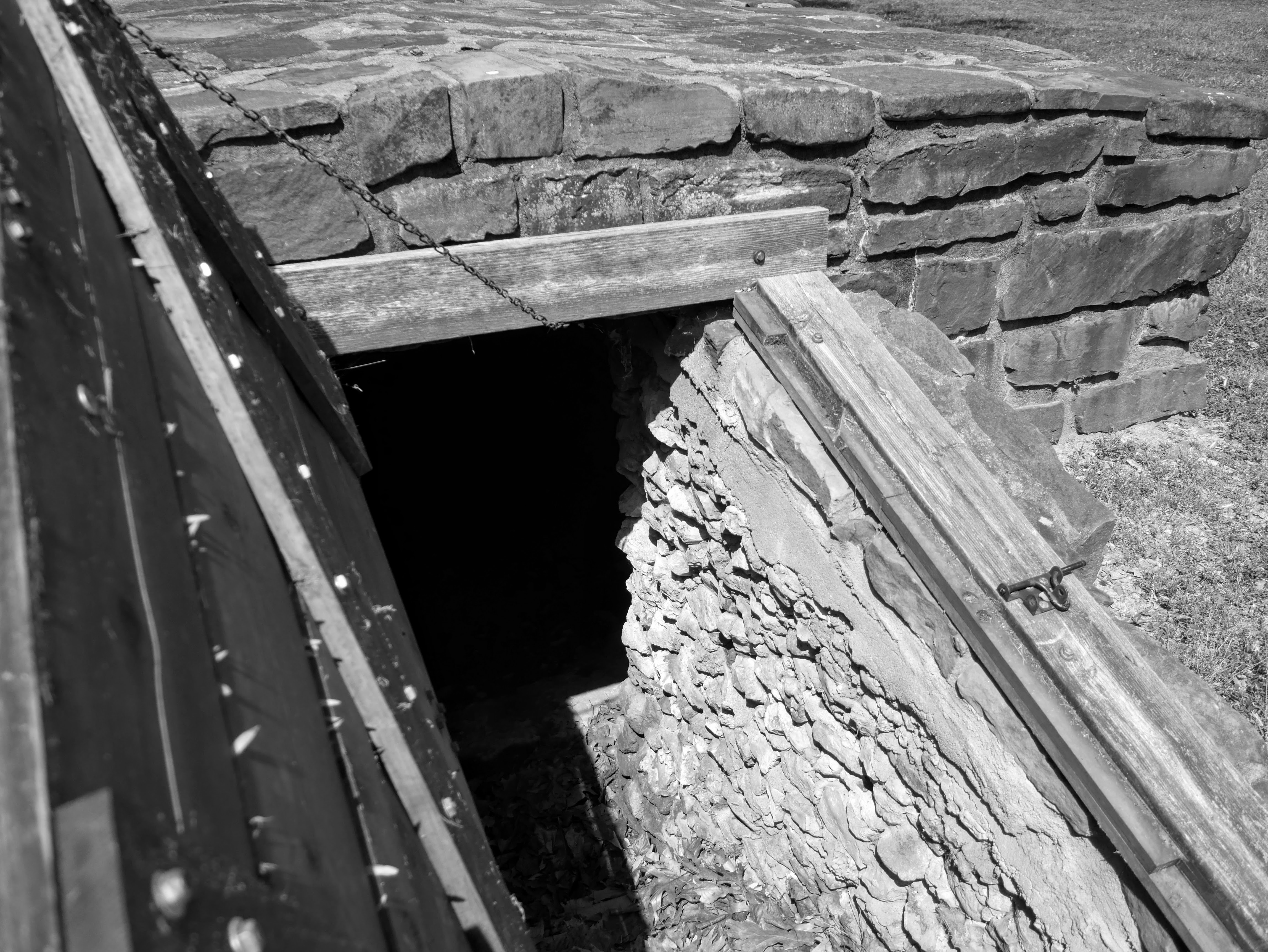 A wooden door opens to a dark stone cellar. The sunlight hits the right wall of the cellar entrance showing that many small stones are stacked to reinforce the walls.