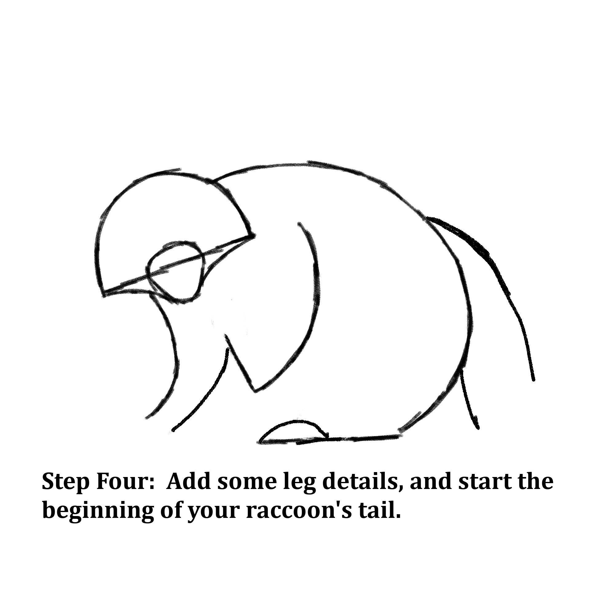 "Drawn shapes with text instructions: ""Step Four: Add some leg details, and start the beginning of your raccoon's tail."""