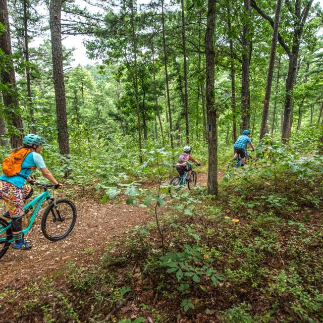 Family mountain biking at Hobbs State Park-Conservation Area