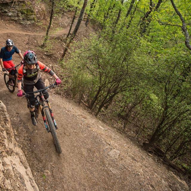 Mountain Bike Trails at Mount Nebo State Park - Monument Trails
