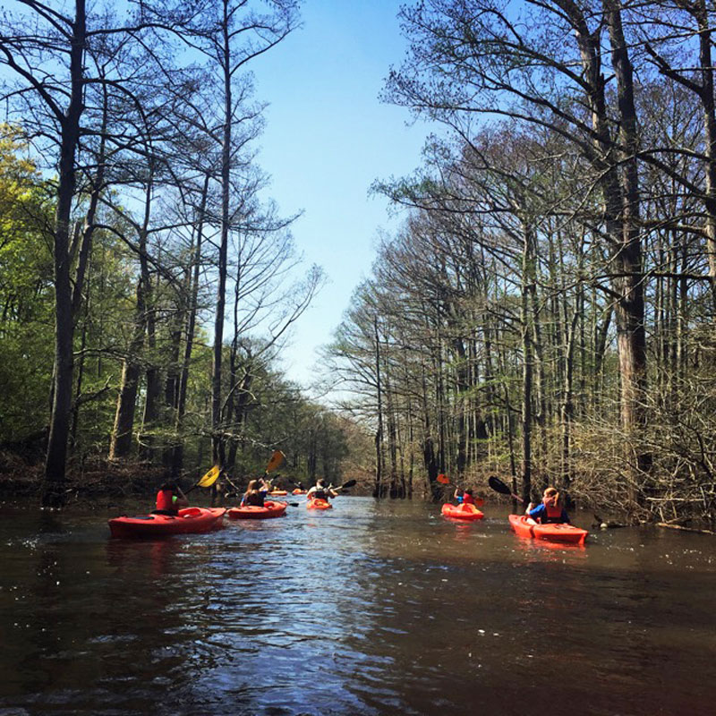 cane creek state park kayaking